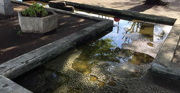 戸田市 東町公園 水場