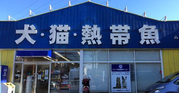 戸田市の熱帯魚ショップ
