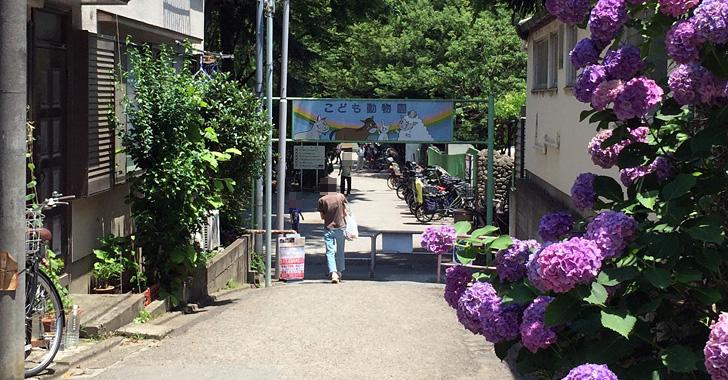 板橋区立こども動物園 入口