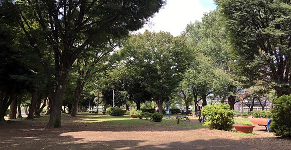 戸田公園 広い