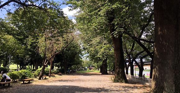 戸田公園 椅子たくさん