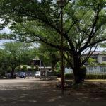 新田口公園