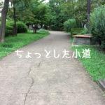 戸田公園駅東口 ちょとした小道