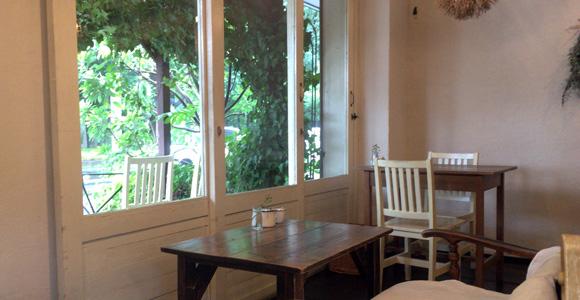 カフェ・シバケンから見える樹々