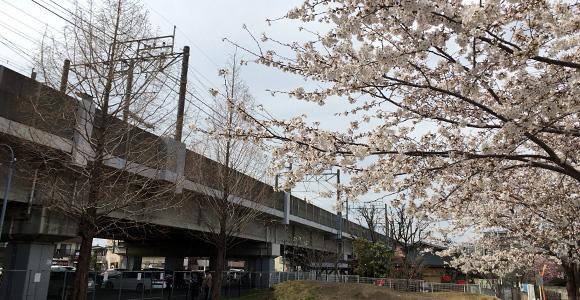 おひさま公園と埼京線