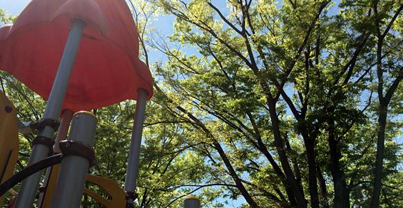 遊具と樹々