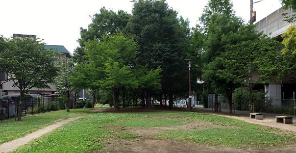 大前緑地「こどもの森」