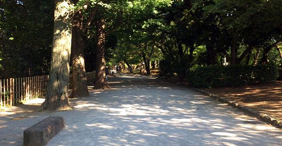 心地良い木陰の道を進むと・・・
