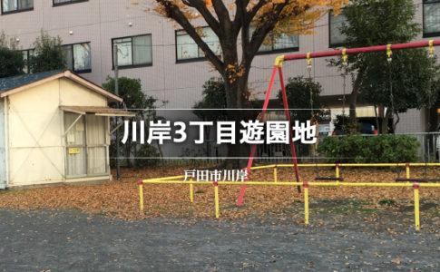 川岸3丁目遊園地(戸田市公園)
