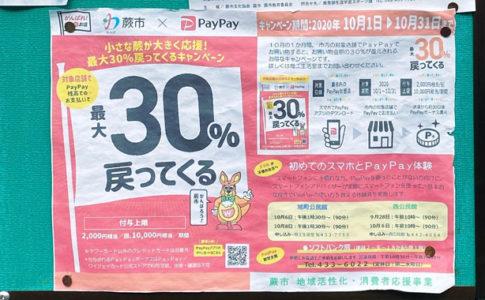蕨市×PayPay~小さな蕨が大きく応援!最大30%戻ってくるキャンペーン~