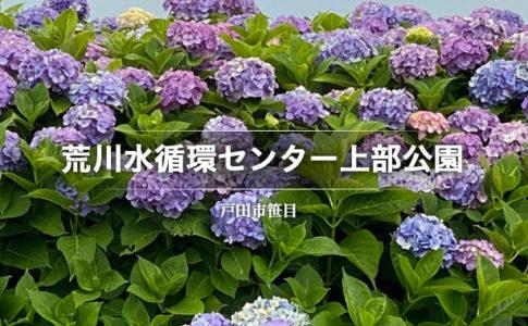 荒川水循環センター上部公園(戸田市笹目)