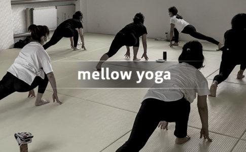 mellow yoga メロウヨガ(戸田市/ヨガ教室)