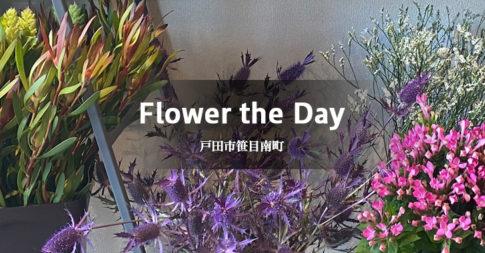 Flower the Day(戸田市笹目南町/フラワーショップ)